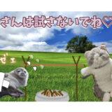 【よい子はマネしないでね】ゲームに5万円課金した彼氏の懲らしめ方!